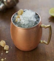 moscow mule - the ginger people